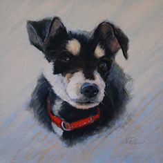 Animal/ Dog Oil Painting by Susan Nall