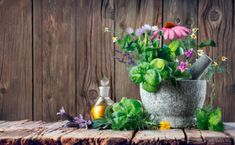 Essential Oils For Multiple Sclerosis: Beating MS One Step At A Time Essential Oil Benefits Doterra Oils, Essential Oil Uses, Oil Benefits, Healing Herbs, Multiple Sclerosis, Photography Website, Homeopathy, Herbal Remedies, Natural Remedies