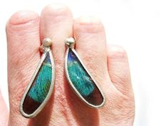 Real Dragonfly Wing Ring One of a Kind by JennKoDesign on Etsy