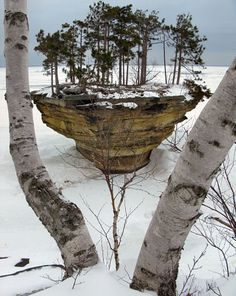 Winter at Turnip Rock: located in Huron County, on the rocky shores of Lake Huron, Michigan, and its unique shape is the result of thousands of years of tidal erosion. There is a pretty developed vegetation and some twenty-foot-high trees on it. The surrounding land is privately owned, so visitors can only view the rock via boat or over the frozen lake in the winter.