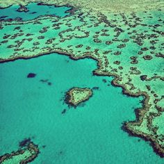 A natural heart formed in one of the 2900 coral reefs that form the Great Barrier Reef #heartreef #greatbarrierreef #whitsundays by reesphillips http://ift.tt/1UokkV2