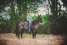 photo session horses