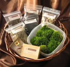 We've posted many times about terrariums and often have featured succulents, but things like this bathmat and this post on indoor plantscapeshave people asking us where the heck to find moss and the supplies needed for a moss terrarium