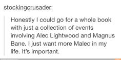 yeah, I want a Malec book