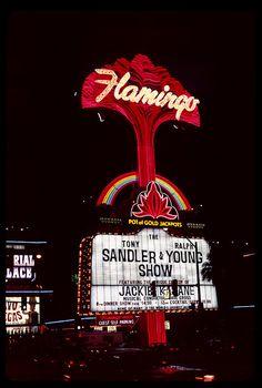 Vintage Las Vegas - Flamingo Hotel & Casino neon sign