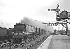 Bulleid WC/BB 'West Country' and 'Battle of Britain' class Diesel Locomotive, Steam Locomotive, Southern Railways, Merchant Navy, Bullen, Old Trains, British Rail, Battle Of Britain, Steam Engine
