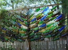 Bottle Tree is a Privacy Screen