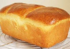 brioche mousseline thermomix - recette facile pour vous - The Best Raw Dog Recipes Crusty Italian Bread Recipe, Italian Bread Recipes, Easy Bread Recipes, Dog Recipes, Cooking Recipes, Easy Cat Food Recipe, Cake Recipe For Cats, Homemade Cat Food, Thermomix Bread