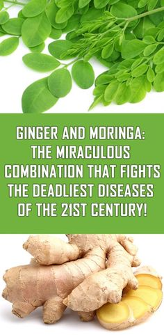 Ginger And Moringa The Miraculous Combination That Fights The Deadliest Diseases. Ginger And Moringa The Miraculous Combination That . Cooking With Turmeric, Stomach Problems, Stomach Ulcers, Types Of Arthritis, Natural Home Remedies, Health Remedies, Herbal Remedies, Holistic Remedies, Cold Remedies