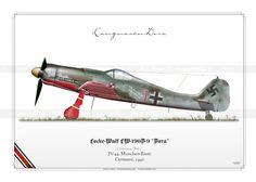 "FW-190D-9 ""Dora"" JPV-10"