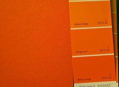 kensington bliss: Lively Orange Bookshelves for Our Basement?