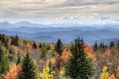 5 Favorite Trails at Grayson Highlands State Park in Virginia | Southeastern Traveler - Travel Photography & Blog by Jason Barnette