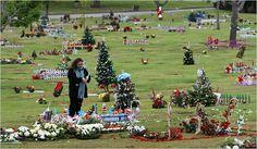 Christmas Flourishes, in a Trim Green Stillness - New York Times