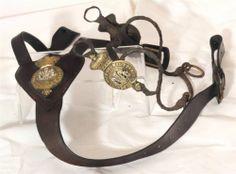 Victorian Military Horse Bit & Martingale , 3rd Dragoon , British Army Cavalry