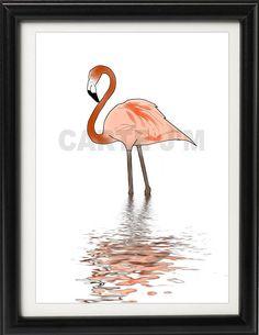 Flamingo illustration 1
