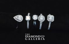 Explore the engagement ring cut of your dreams! Dream Engagement Rings, Perfect Engagement Ring, Engagement Ring Cuts, Diamond Earrings, Dreams, Explore, Jewelry, Jewlery, Jewerly