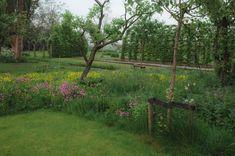 tuinontwerp-landelijke-tuin | TuinTuin Bonsai Garden, Down On The Farm, Go Outside, Wild Flowers, New Homes, Home And Garden, Outdoor Structures, Patio, Green