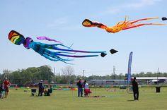 #KiteFestLA #westbatonrouge #louisianafestival #KiteFestival