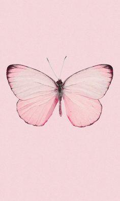 pink butterfly aesthetic Rebel In A New Dress Pink Wallpaper Backgrounds, Butterfly Wallpaper Iphone, Wallpaper Iphone Cute, Aesthetic Iphone Wallpaper, Aesthetic Wallpapers, Screen Wallpaper, Phone Wallpapers, Wallpaper Quotes, Butterfly Drawing