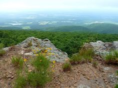 11 Amazing Arkansas Hikes Under 3 Miles You'll Absolutely Love