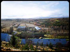 Sólheimar Ecovillage in Iceland