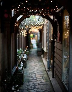 fairy lights in the garden images | Fairy lights strung over an alleyway (image from capecodcollegiate ...