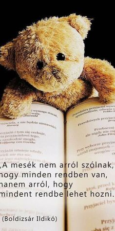 Gratis obraz na Pixabay - Teddy, Zabawka, Zwierząt Quotations, Qoutes, Funny Quotes, Life Quotes, Daisy Petals, Good Sentences, Daisy Girl Scouts, Good Advice For Life, Inspirational Books