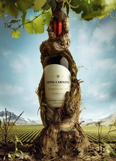 Authentic Photo Manipulations by Salamagica – with Exclusive Interview – Photoshop and photography galleries Creative Advertising, Wine Advertising, Ads Creative, Creative Posters, Advertising Design, Advertising Campaign, Fashion Advertising, Wine Poster, Poster Ads