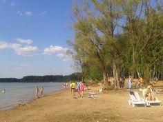 Пляж. Можайское водохранилище.
