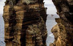 Redbull cliff diving final :)