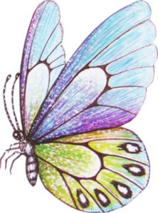 mediona.mediona — «Histoire_d-Elf…» на Яндекс.Фотках Butterfly Quilt, Butterfly Drawing, Butterfly Painting, Butterfly Wallpaper, Butterfly Crafts, Fabric Painting, Painting & Drawing, Art Papillon, Butterfly Pictures