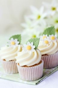 Cupcakes decorated with sugar daisies , Daisy cupcakes. Cupcakes decorated with sugar daisies , Cookies Cupcake, Daisy Cupcakes, Spring Cupcakes, Pretty Cupcakes, Easter Cupcakes, Beautiful Cupcakes, Spring Wedding Cupcakes, Fondant Flower Cupcakes, Country Cupcakes