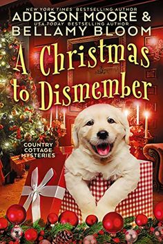 Got Books, Book Club Books, Books To Read, Mystery Series, Mystery Books, Addison Moore, Cozy Mysteries, Christmas Books, Great Stories