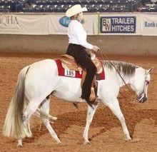 Maintaining Your Horse's Topline Part 1 - GoHorseShow.com