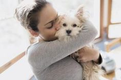 Young woman hugs Morkie breed dog - Gary S Chapman / Stockbyte / Getty Images