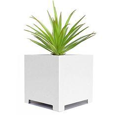 "Alora Cube Planter - White - 18"" x 18"" x 18"" NMN Products https://smile.amazon.com/dp/B003TOM9TY/ref=cm_sw_r_pi_dp_x_6LUtyb4F00Y6E"