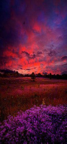 'Heartfelt' Milwaukee, Wisconsin, USA - Horizons by Phil Koch ☮k☮ #amazingviews
