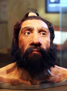 Reconstruction of the head of the Shanidar 1 fossil, a Neanderthal male who lived c. 70,000 years ago (John Gurche 2010).