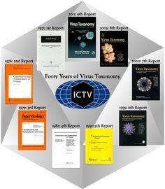 ICTV Home