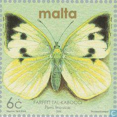Malta - Butterflies 2002