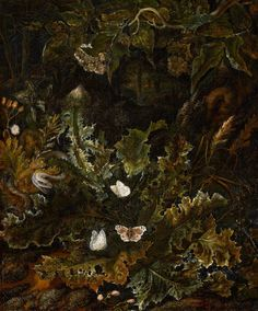 Otto Marseus van Schrieck (Dutch, 1620 – 1678) Chardon, reptile and butterfly,1678. Oil on canvas, Muséede Grenoble, France