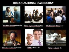 ORGANIZATIONAL PSYCHOLOGY - what other people think I do