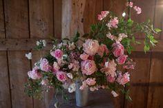 Письмо «You will love this» — Erin/ Floret Flower Farm — Яндекс.Почта