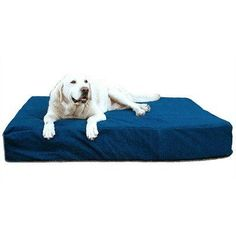 8' BioMedic Memory Foam Dog Pillow Size: Giant, Fabric: Faux Leather - Charcoal * Hurry! Check out this great product : Pet dog bedding