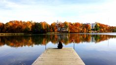 Töölönlahti: my favourite spot during autumn in #Helsinki