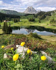 Der schönste Platz Österreichs - Wanderung zum Körbersee - Moosbrugger Climbing Places To Travel, Places To Go, Heart Of Europe, Climbing, Golf Courses, Outdoor, In This Moment, Mountains, Summer