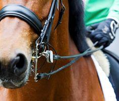 Elastische teugels hebben als nadeel dat je , als je paard je hulp opvolgt, dat niet snel kunt bekrachtigen door direct de druk weg te nemen. Leertheoretisch gezien niet handig dus.