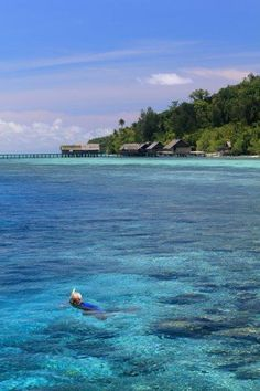 Snorkeling on Kri Island Raja Ampat Islands, Archipelago, Some Pictures, Snorkeling, Underwater, Places To Travel, Free People, Earth, Life