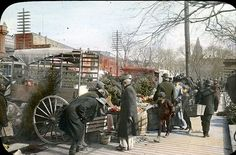 Street Market ~ View of street vendors at 7th and B Streets, DC (Ca. 1880)
