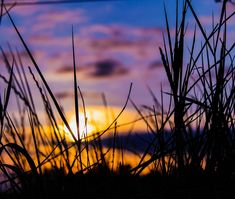 Sunset Photography, Time Of The Year, Fields, Skyline, Clouds, Digital, Night, Poster, Outdoor